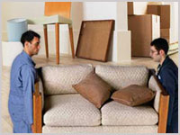 packers and movers noida sector 49